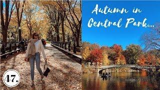 AUTUMN IN NEW YORK CITY + SEPHORA HAUL | Vlog 47