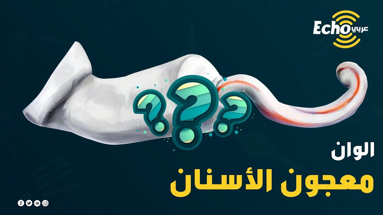 سؤال قبل النوم    السؤال الذي حير الجميع إزاي معجون الأسنان بيخرج مخطط كدا ومش بيتلخبط؟