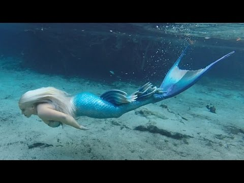 Download Youtube: BILL'S AMAZING SWIM WITH A MERMAID!