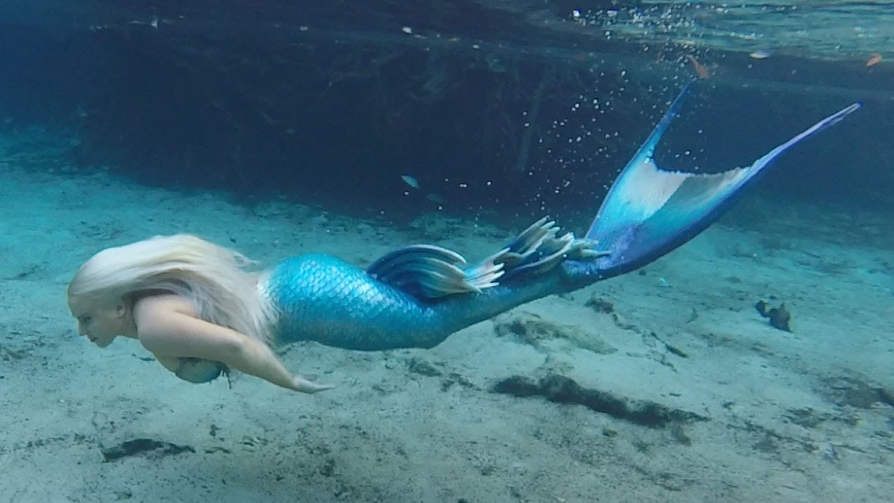 BILLS AMAZING SWIM WITH A MERMAID
