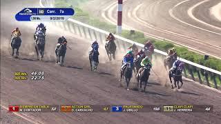 Vidéo de la course PMU PREMIO JENIZARO