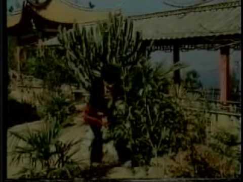 YueFei Xing Yi Fist