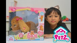 The Most Obedient Puppy Can Dance and Sing Too - Club Petz IMC Toys Lucy