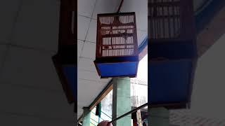 Download Video Ciblek gunung # lagi belajar nembak musuh MP3 3GP MP4