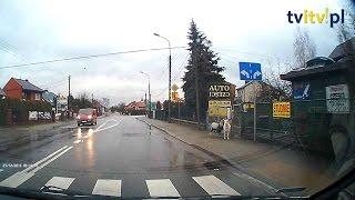 Kozy na wybiegu w mieście