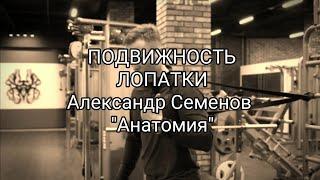 подвижность лопаток с Александром Семеновым (