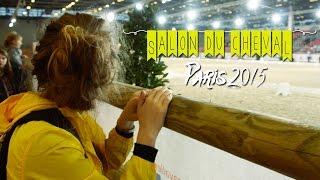 Video ~ Salon du Cheval 2015 ~ Shetlands, Shopping et Foie gras download MP3, 3GP, MP4, WEBM, AVI, FLV Oktober 2018