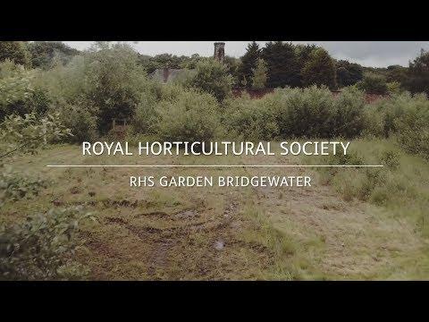 RHS Garden Bridgewater | A New Beginning