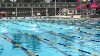 聖芳濟書院4x50游泳賽