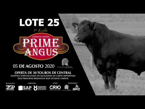 LOTE 25   BLACK OPAL TEI922 CHIMICHURRI Prod  Agência El Campo