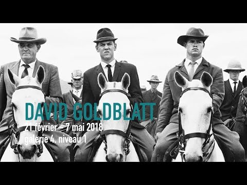 Teaser | David Goldblatt | Exposition | Centre Pompidou
