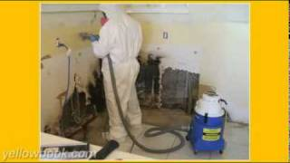 Mold Removal Fort Myers- FREE Inspection (239) 204-2871