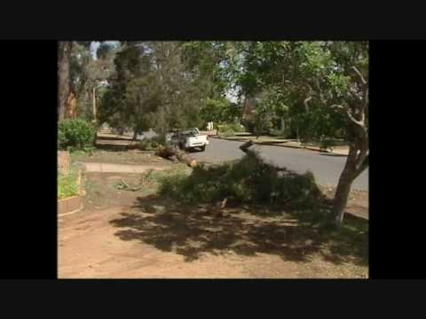NSWNMA: Mental Health Report - Prime 7 News 10/ 11/ 15 from YouTube · Duration:  1 minutes 39 seconds