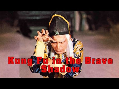 Wu Tang Collection - Brave in the Kung Fu Shadow