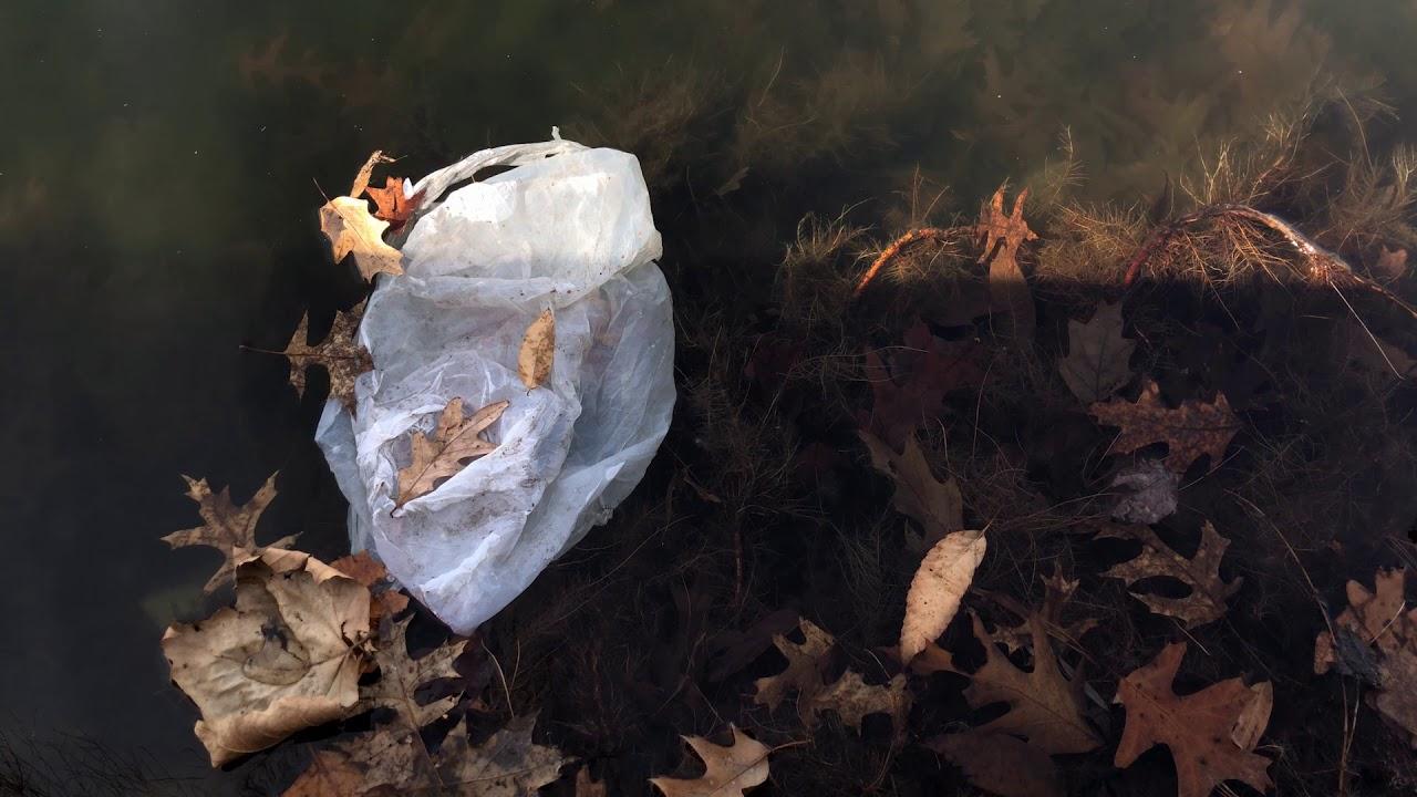 Wade Lagoon (White Plastic Bag #2)