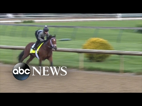 Patch, the one-eyed horse competing in Kentucky Derby, is 'lovable underdog'