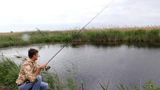 Рыбалка на крупного карася в зарослях!