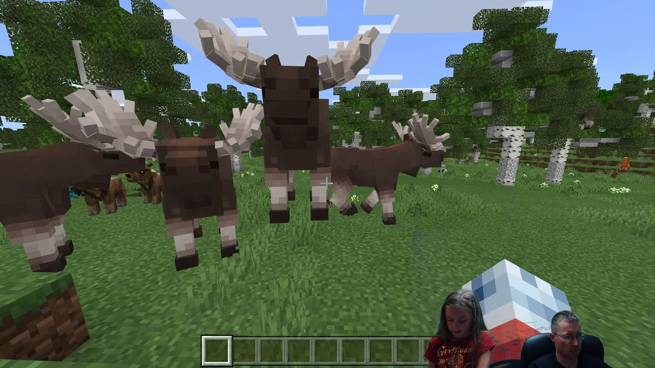 Minecraft Animals Texture Pack!