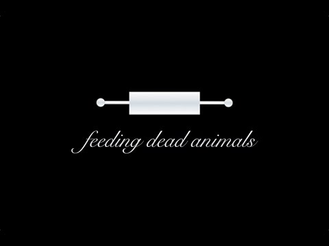 feeding dead animals - beat the pants off