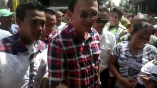 Video Warga Celincing Kesenangan Kehadiran Ahok 1 February 2017 download MP3, 3GP, MP4, WEBM, AVI, FLV November 2017