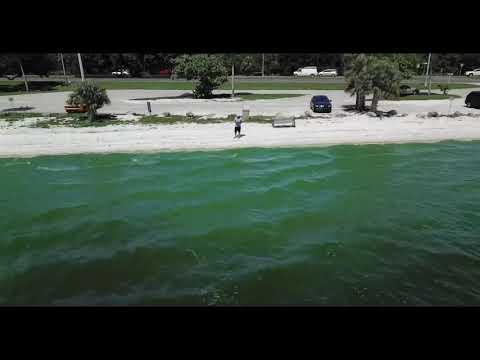 Green Algae in Cape Coral FL 8-12-18
