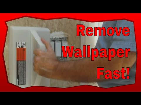 Wagner Power Steamer: How to Use The Best Wallpaper Removal Steamer Quickly And Easily! - YouTube