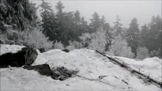 Běh na vrchol Třemošná 779 mnm Brdy + Omrzlý Pes