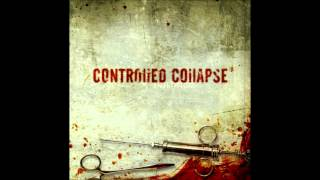 Watch Controlled Collapse Trust takes Time video