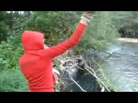Girl Throws Puppies In River Clip At Yantheblackman Youtube