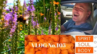 "106. ""SUMMER ROCKS"" - VLOG No.106 - 12th JULY 2020"