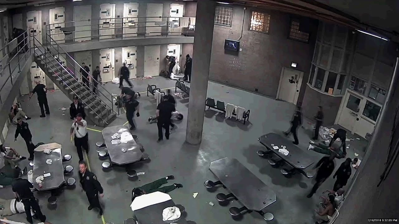 Image result for Fight Between Chicago Jail Inmates