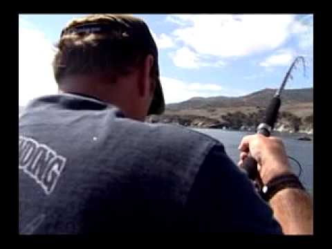 Episode 411gail Force Sportfishing With Dan Hernandez