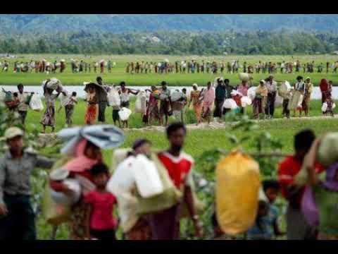Exclusive: Returning Rohingya May Lose Land, Crops Under Myanmar Plans