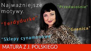 """224. Motywy literackie:  """"Ferdydurke"""", """"Sklepy cynamonowe"""", """"Granica"""", """"Przedwiośnie"""""""