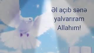 ( DÌNÌ STATUS)\ALLAHIM SENE_ YALVARIRAM_ BÌZÌ MEQSED ÚÇÚN_ ÌSTÌFADE _EDEN ÌNSANLARDAN_ QORU...👈👆\