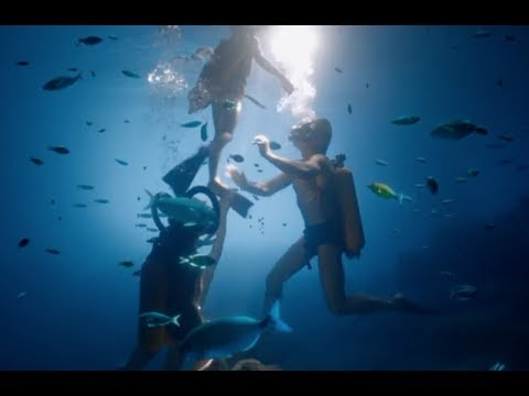 Interview with Philippe Cousteau Jr.
