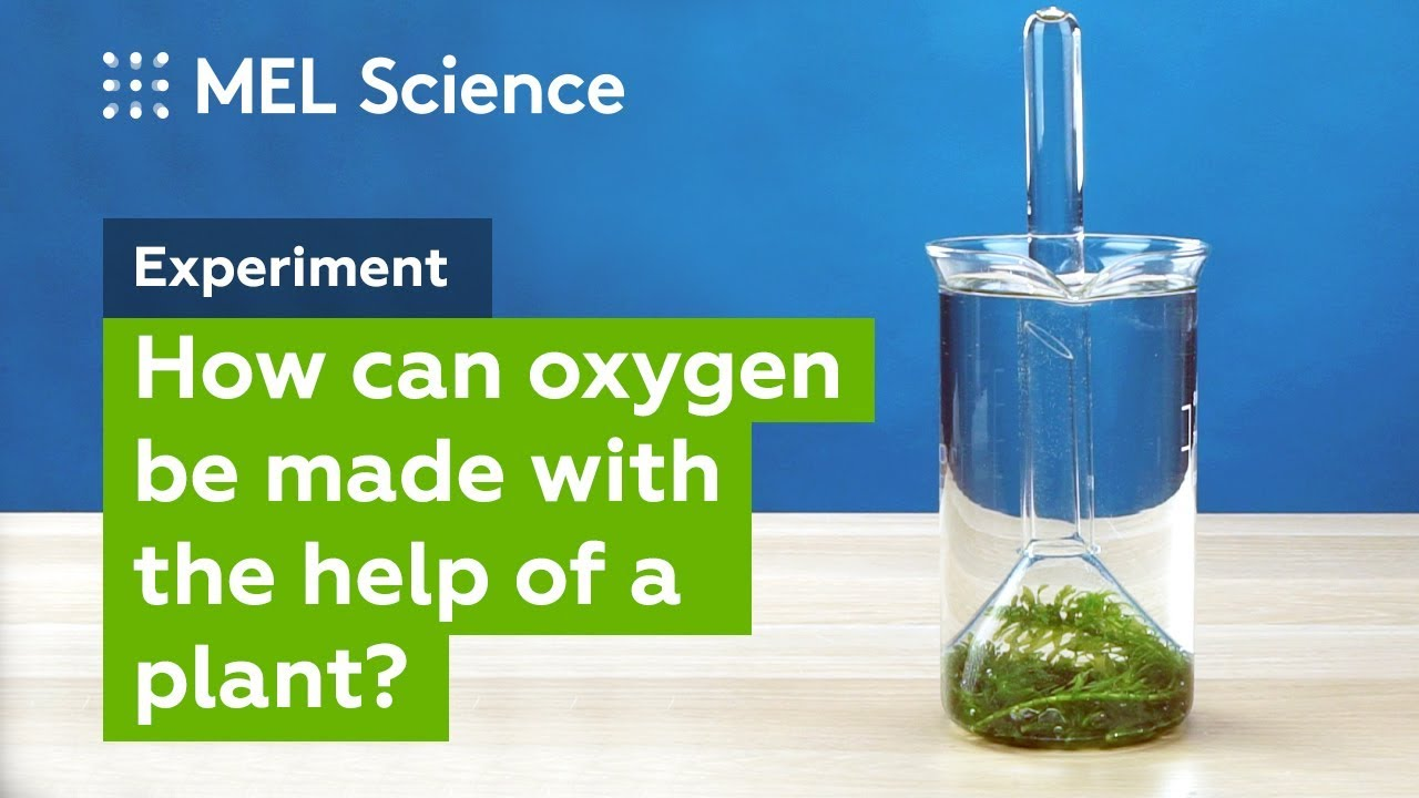 how to make oxygen water at home