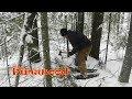 Winter Shelter Fun not Bushcraft pt 2 Firewood