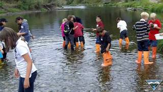 kids creek boots bugs fun way to learn environmental science