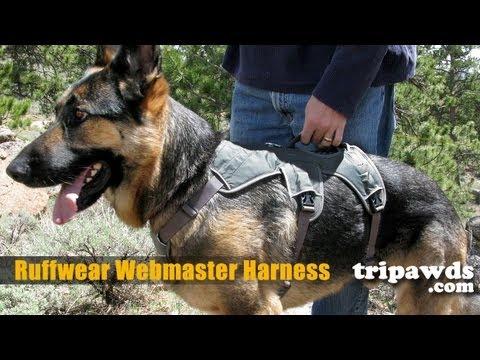 Ruffwear Web Master Dog Support Harness Demo