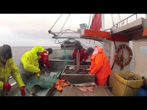 Devon Fishers in Norway