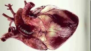 BLOODGROUP - MYSTERIES UNDONE (COM TRUISE REMIX)