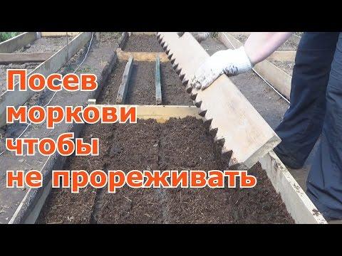 Как посеять морковь чтобы потом не прореживать