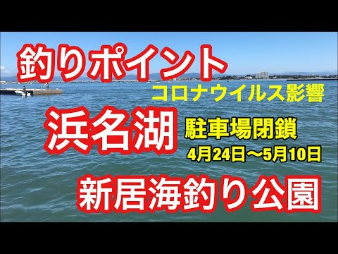新居海釣り公園 ライブカメラ