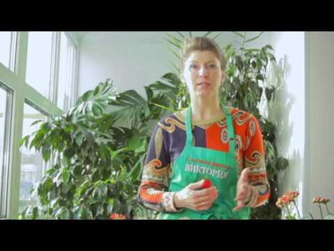 Видео Инсектициды для комнатных растений инструкция по применению