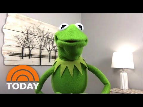 Kermit The Frog Says It's Easy To Be Green With This Advice