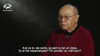 Slavnosti svobody Plzeň (Harry Lee - CZ/EN)