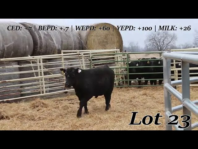 Sweiger Farms Lot 23
