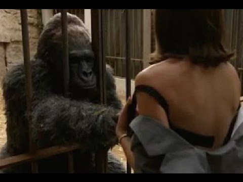 gorilla-bangs-women