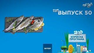 как выбрать качественную мороженую рыбу | ПОЛЕЗНАЯ ПРОГРАММА. Выпуск 50 — 27.11.2019
